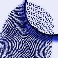 reseaux-sociaux-emploi-identite-numerique